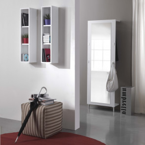 Wall mounted small bookcase and cd cabinet